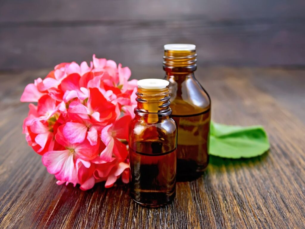 geranium essential oil bottles on table next to pink flower