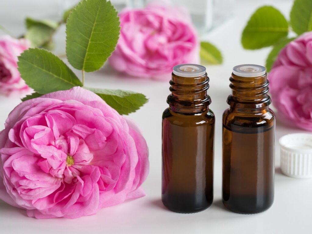 rose essential oil in two bottles with roses on table