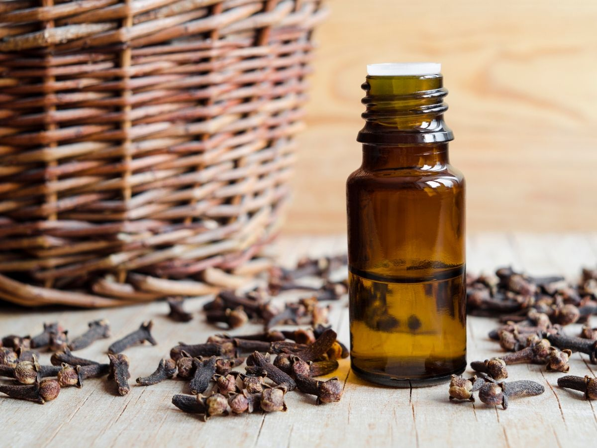 clove essential oil bottle on table.