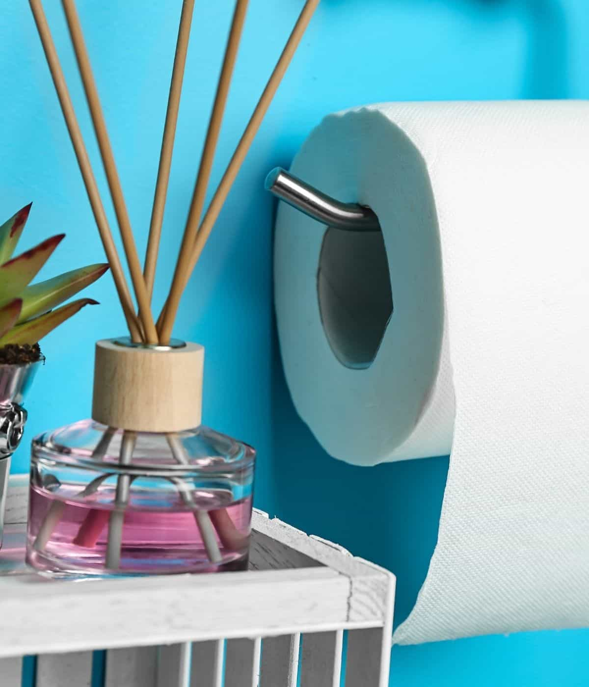 Toilet paper holder next to reed diffuser in bathroom.